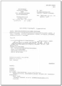 spravka vydannom pasporte perevod kitaiskii