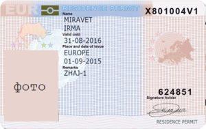 blue card для нидерландов