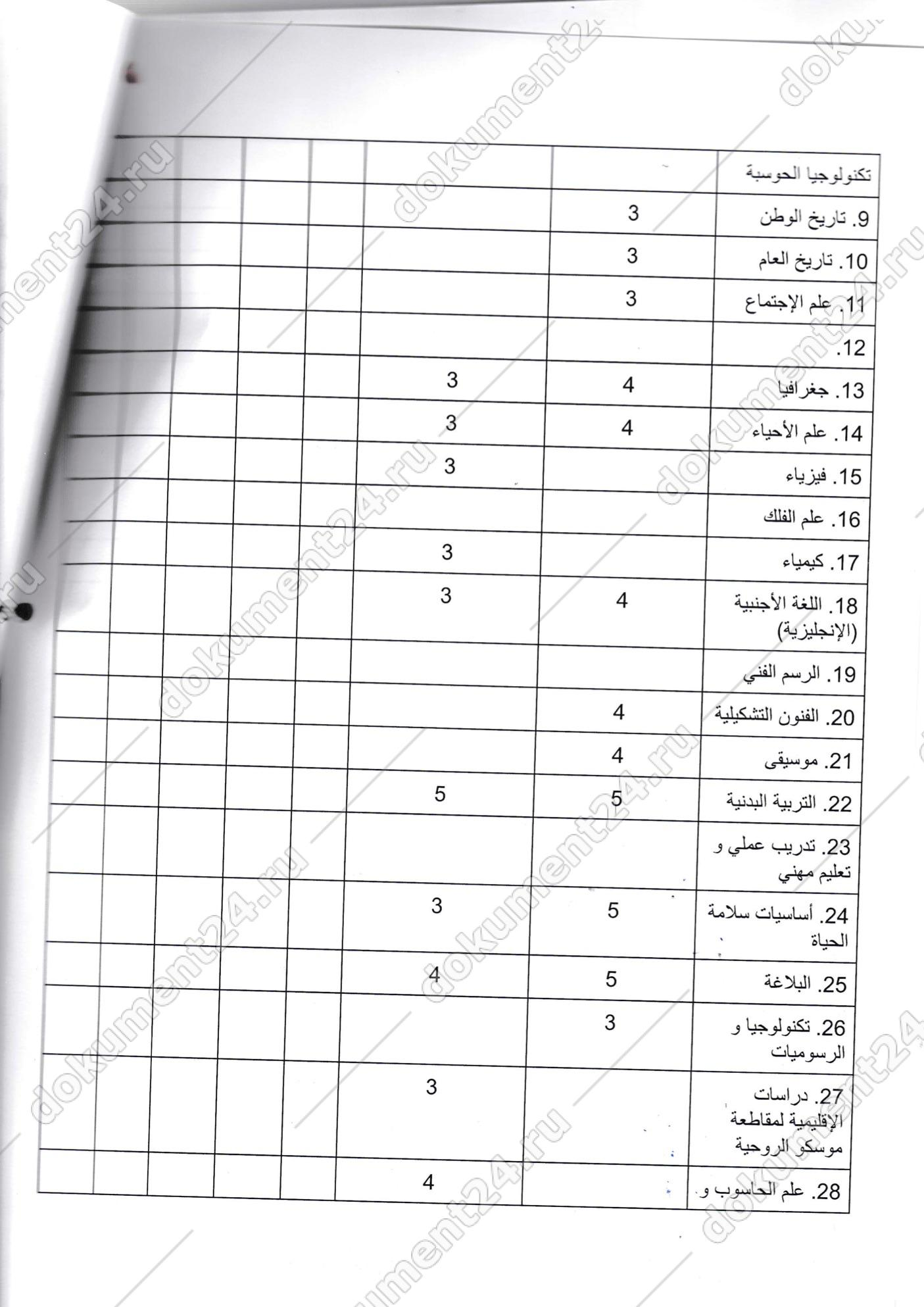 перевод личного дела школьника арабский