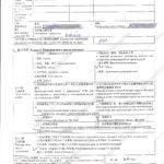 анкета посольство китая пример заполнения лист 2