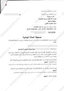 Госуслуги справка о несудимости перевод на арабский