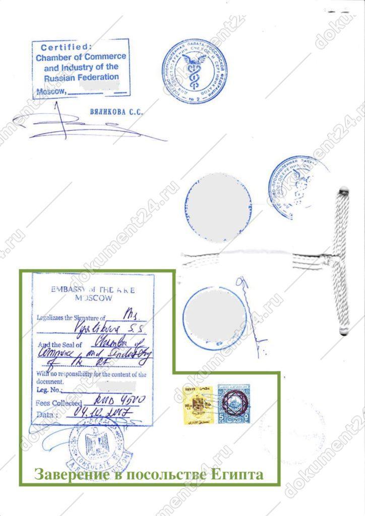 контракт для египта тпп посольство — копия