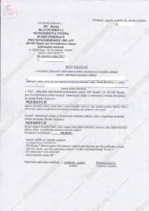 Справка о несудимости для Чехии перевод