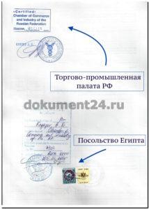 fitosanitarnyy-sertifikat-posolstvo-yegipet