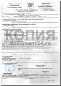 fitosanitarnyy-sertifikat-yegipet