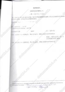 Отчет о поиске товарных знаков для Китая перевод 4
