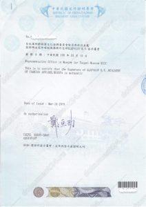 Согласие на суррогатное материнство для Тайваня